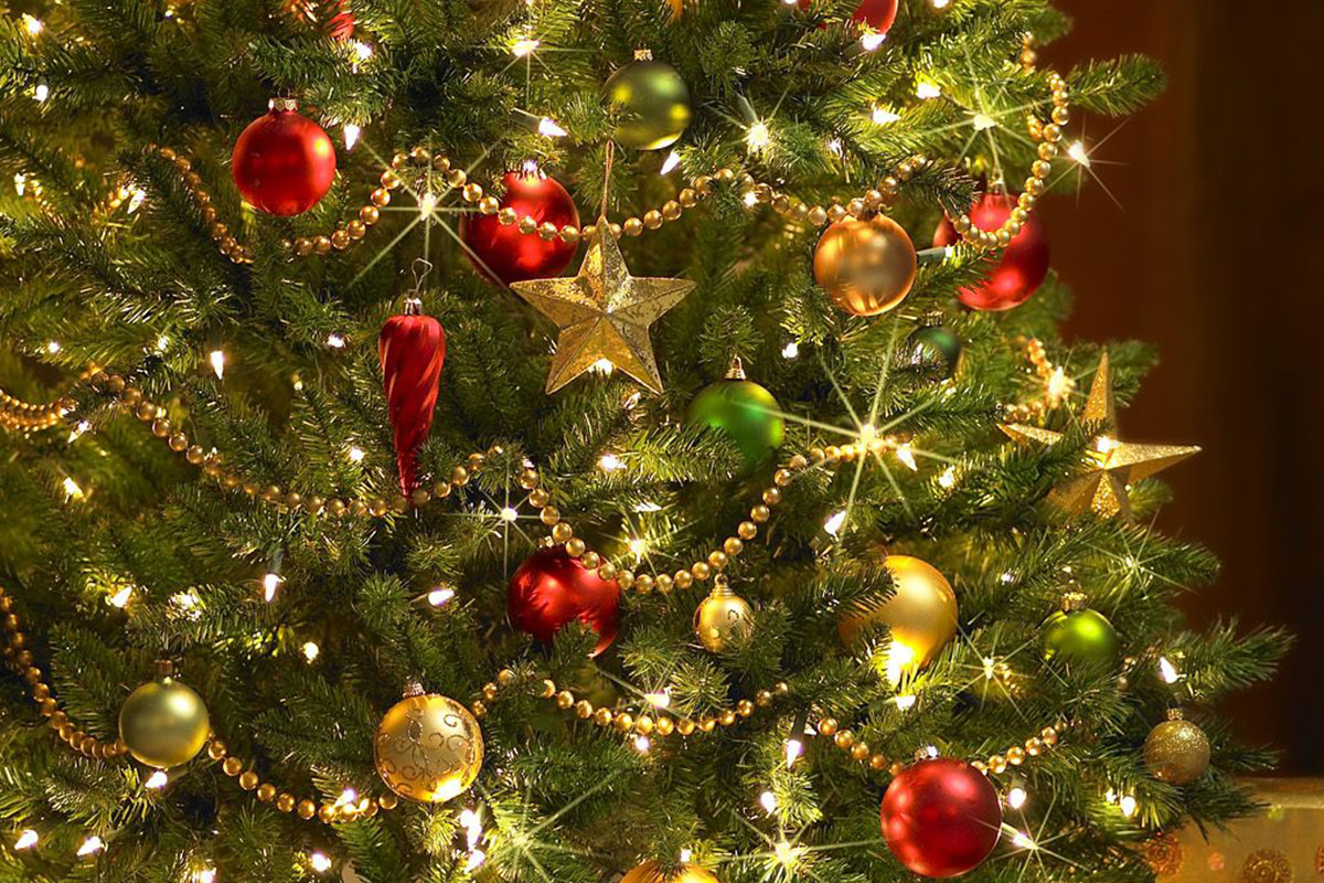 Christmas Tree Lighting At The Boulevard